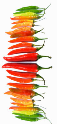 Rainbow of Chiles