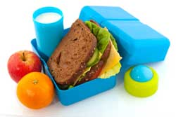 Packed Lunch in Blue Box