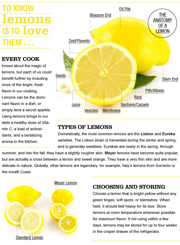 Anatomy of a Lemon