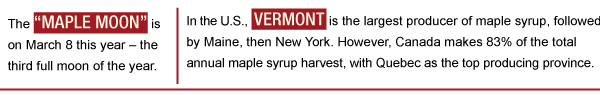 Maple Syrup Trivia