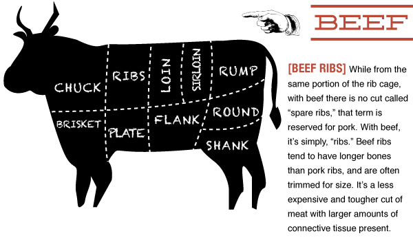 Beef Guide