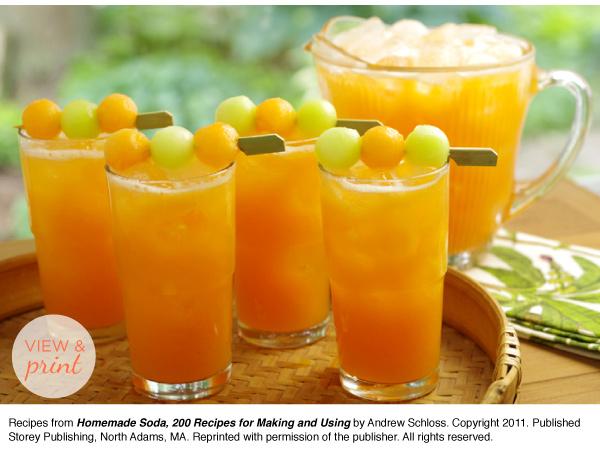 RECIPE: Cantaloupe Clementine Soda