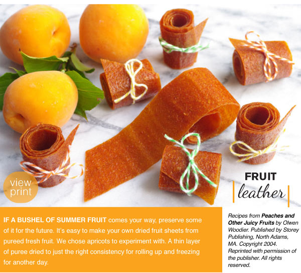 RECIPE: Fruit Leather