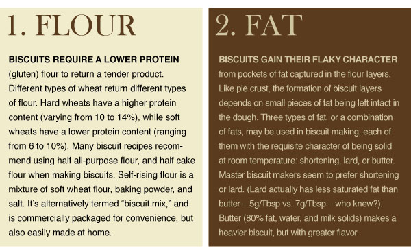 Biscuit Basics