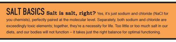 Salt Basics