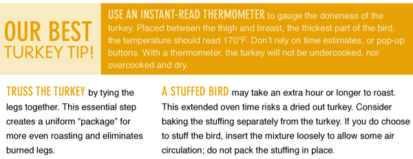 Our Best Turkey Tip
