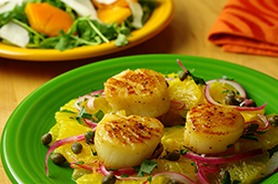Seared Scallops with Oranges