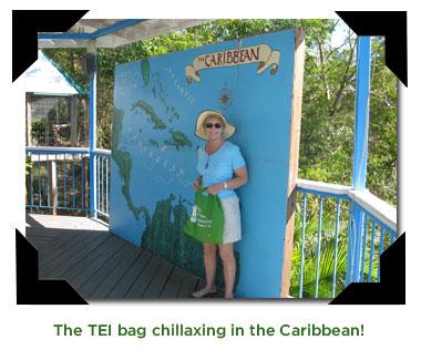 TEI Bag in the Caribbean