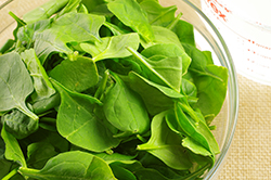 Spinach Wilted