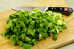 Chopping Bok Choy