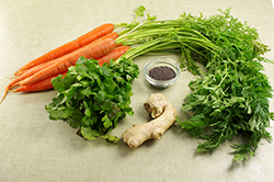 Carrot Ingredients