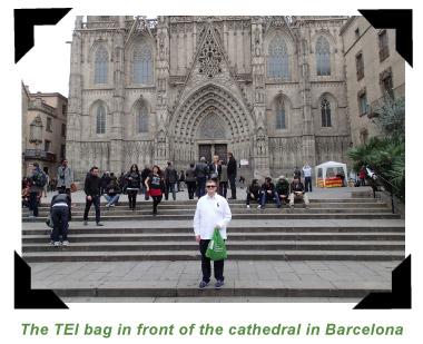 TEI Bag