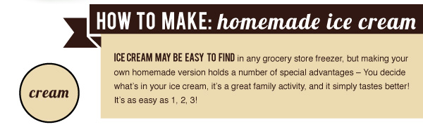 How to Make Home Made Ice Cream