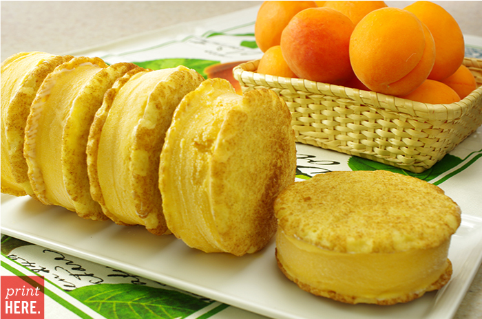 Early Summer Sunrise Apricot Ice Cream on Snickerdoodles