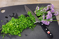Rough Chopping Chives
