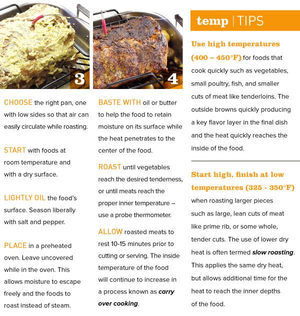 Temp Tips