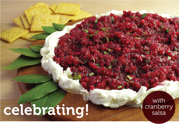 Celebrating Cranberry Salsa