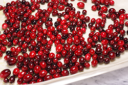 Cranberries Ready to Roast