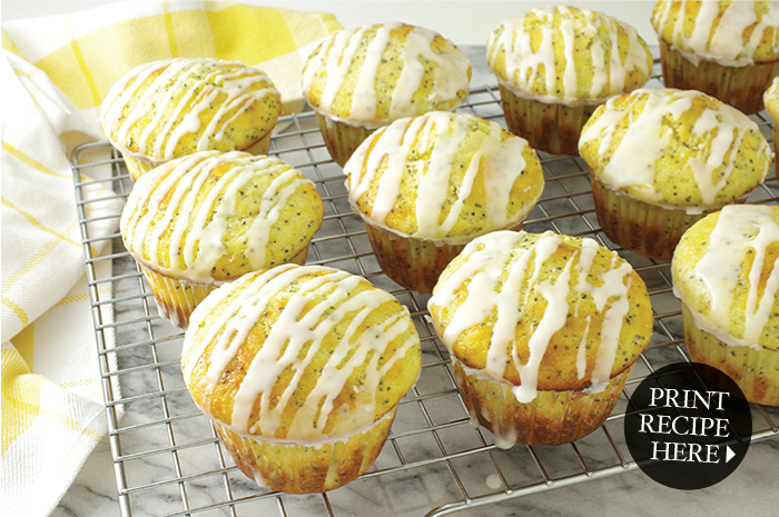 Luscious Citrus Poppyseed Muffins with a Lemon Glaze