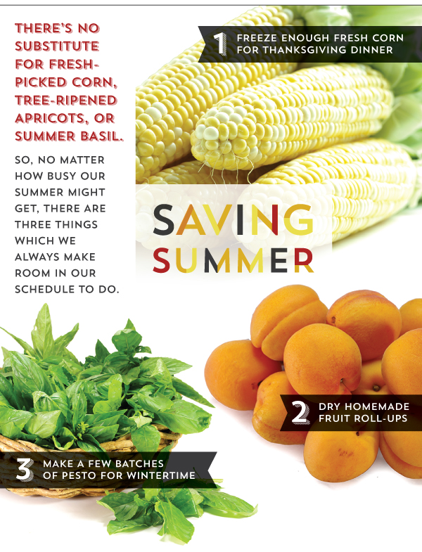 Saving Summer: Easy Freezing and Dehydrating Techniques