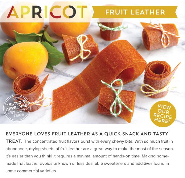 RECIPE: Apricot Fruit Leather