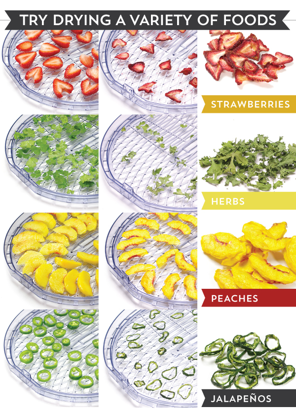 Try Drying a Variety of Foods