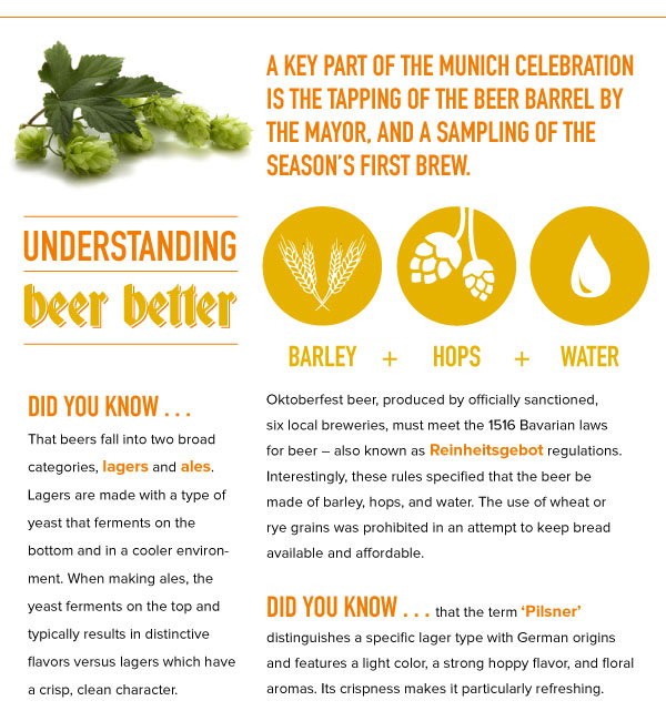 Understanding Better Beer