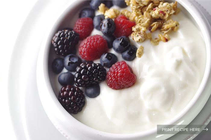 Basic Yogurt