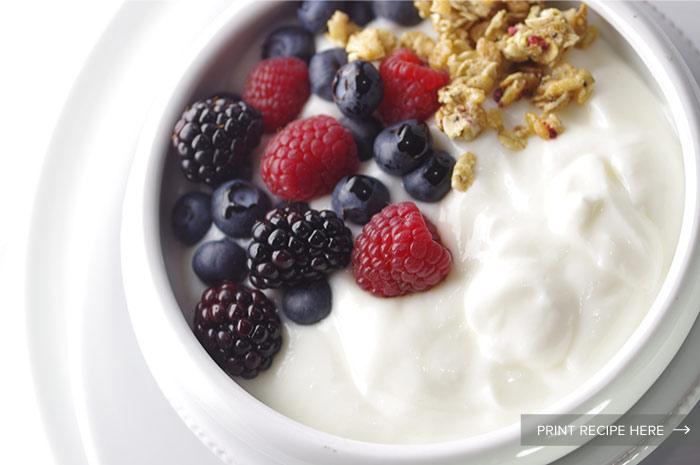 Basic Yogurt