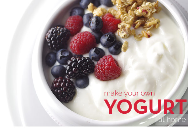 Make Your Own Yogurt at Home