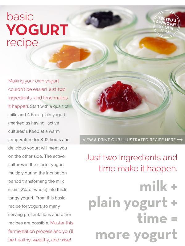 RECIPE: Basic Yogurt Recipe