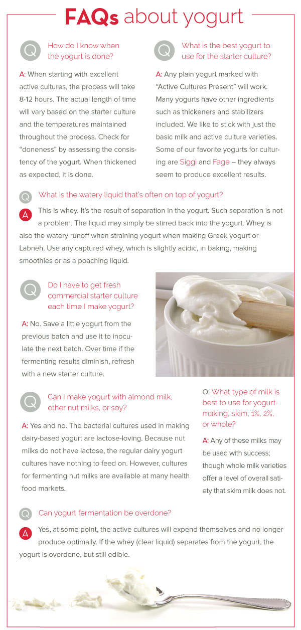 FAQ about Yogurt