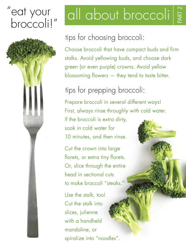 All About Broccoli: Part 2