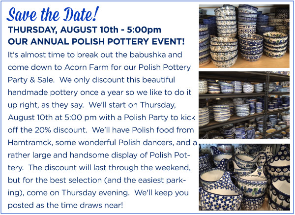 Polish Pottery Party