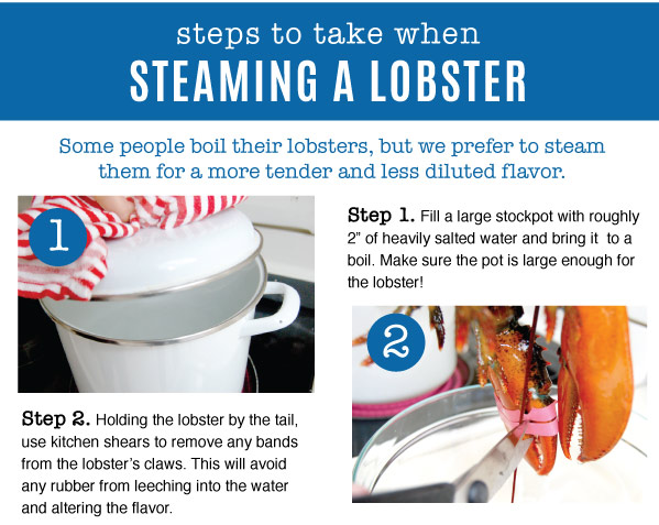 Steaming a Lobster