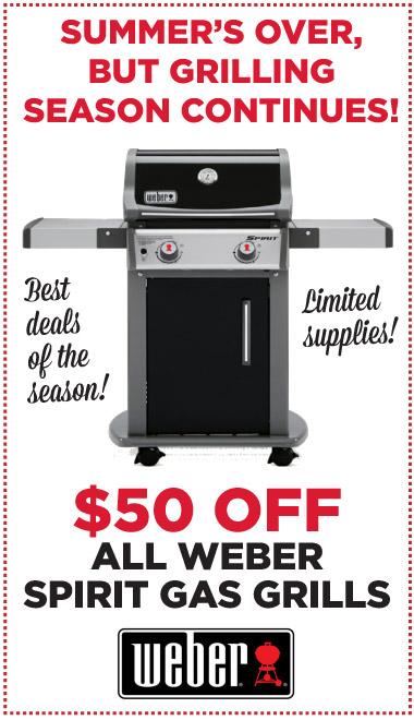 Weber Special