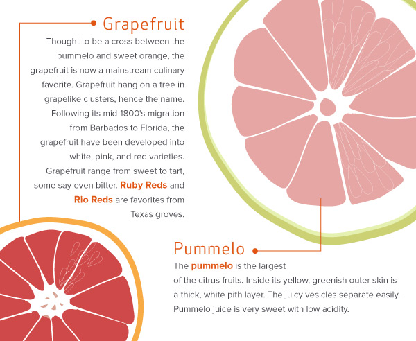 Grapefruit and Pummelo