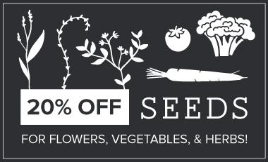 Seeds Sale