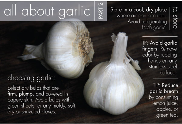 All About Garlic - Part Two