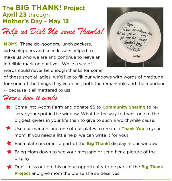 The BIg Thank Project