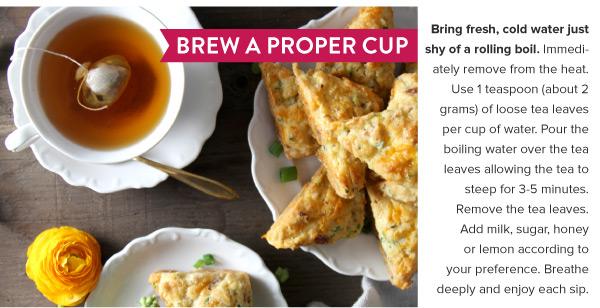 Brew a Proper Cup