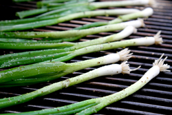 Grill Green Onions