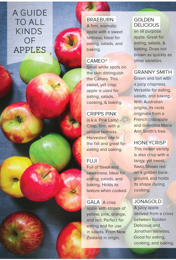 All Kinds of Apples