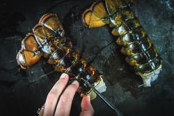 Cut Lobster down the middle