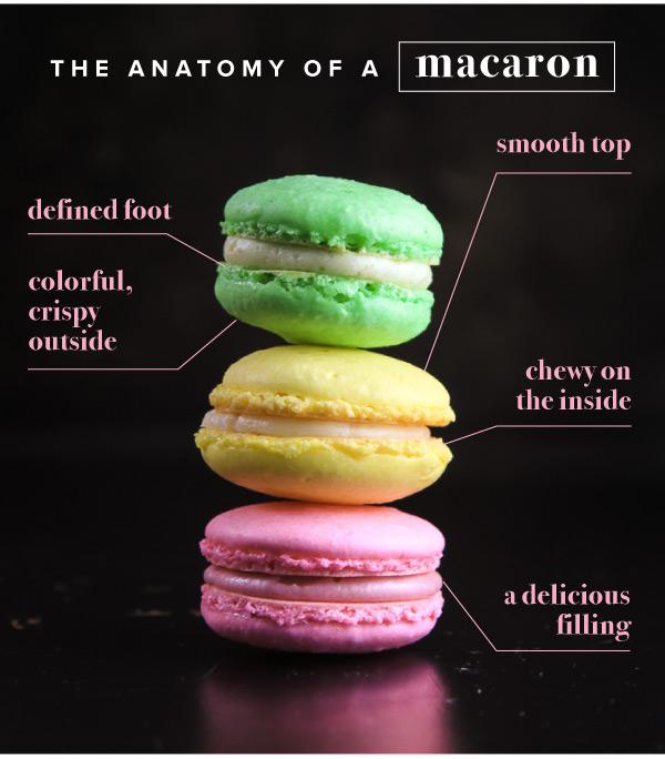 Anatomy of a Macaron