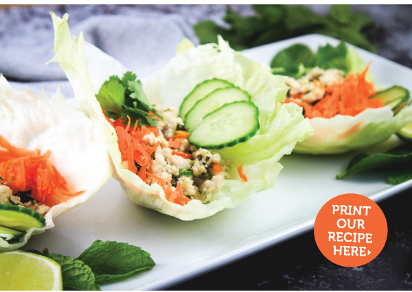 Thai Chicken Lettuce Cups - Larb Gai