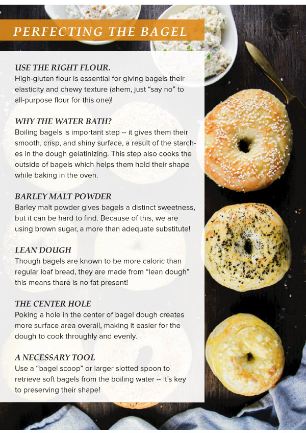 Homemade Bagels and Cream Cheese